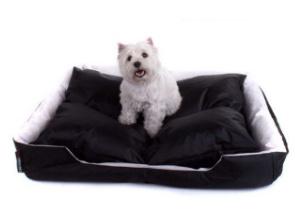 auch tiere wie hund und katze lieben den sitzsack. Black Bedroom Furniture Sets. Home Design Ideas